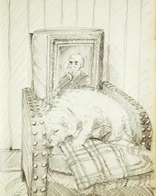 tierportrait malen oder zeichnen lassen tierzeichnung